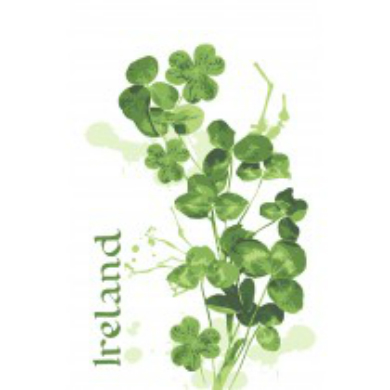 Irish Shamrocks Cotton Tea Towel